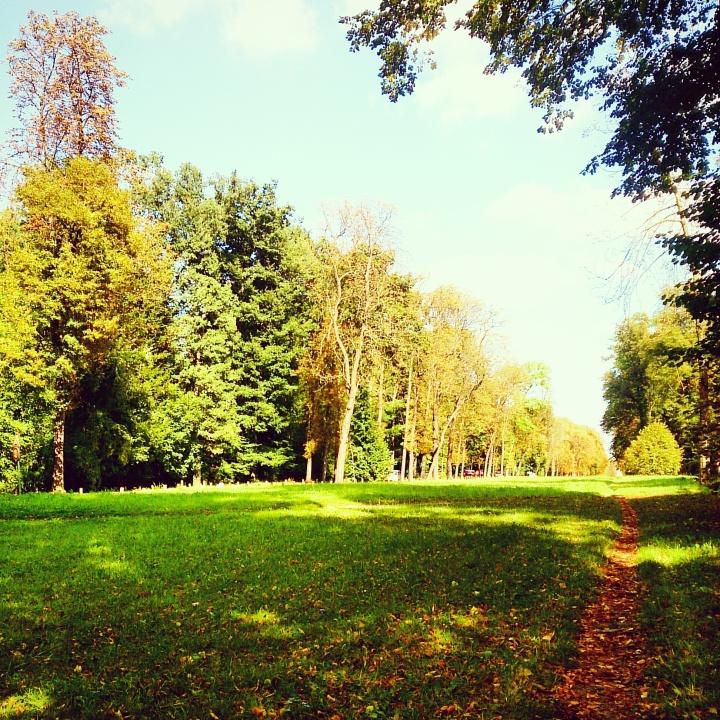 Parc de Saint-Cloud