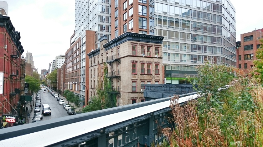 A view of the city from the High Line