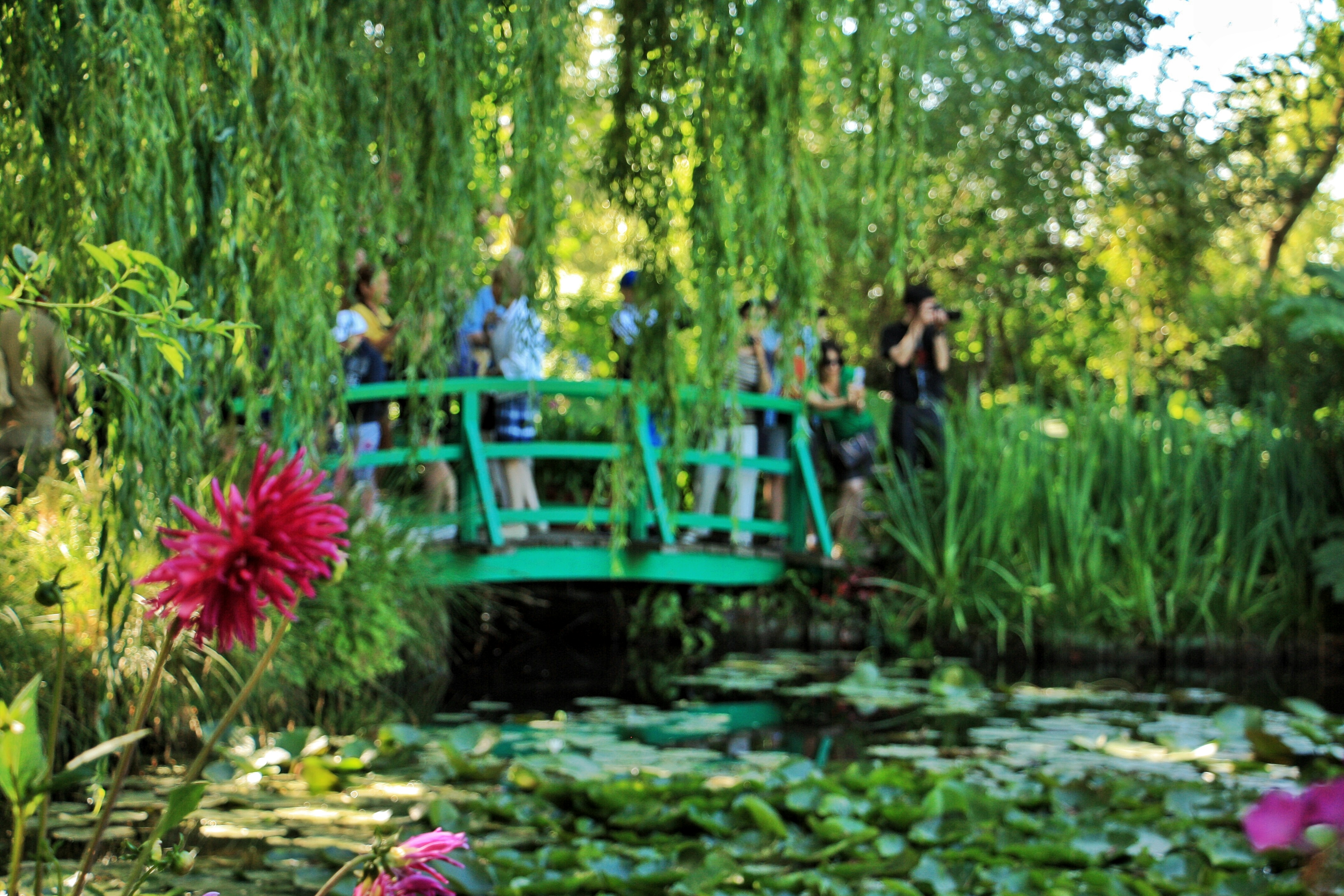 Claude Monetu0027s Gardens, Claude Monet Fondation, Giverny