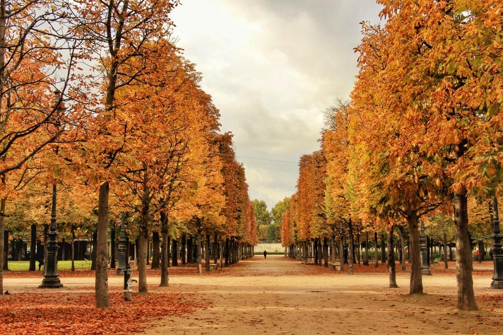 Autumn in Paris Luxembourg Gardens and Tuileries Garden